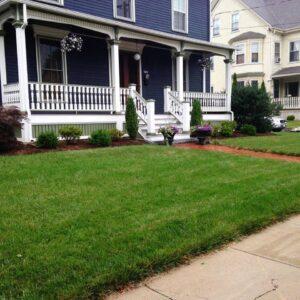 New England Landscape Plantings